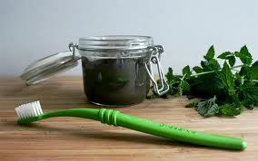 fresh green domaća pasta za zube